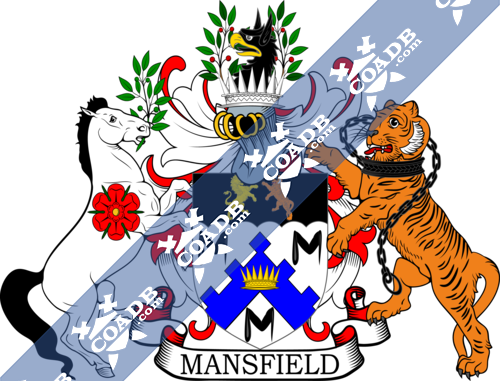mansfield-supporters-1.png