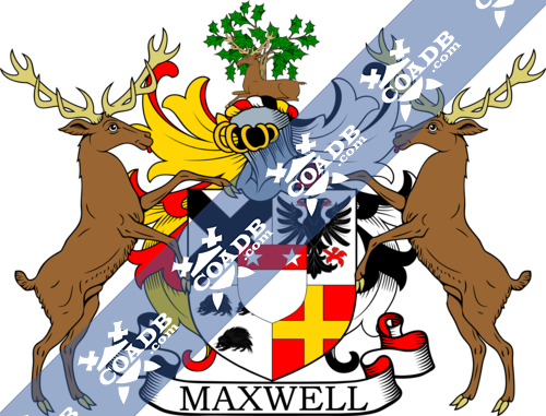 maxwell-supporters-2.png