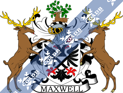 maxwell-supporters-3.png