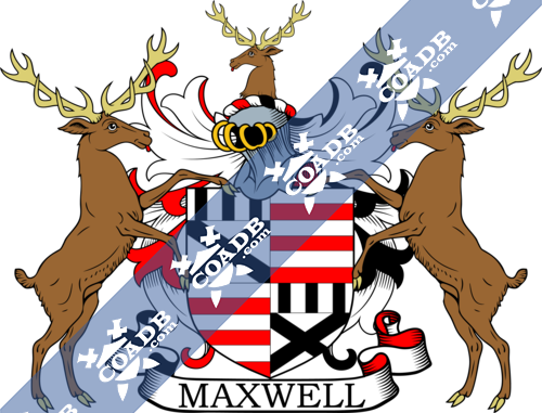maxwell-supporters-30.png