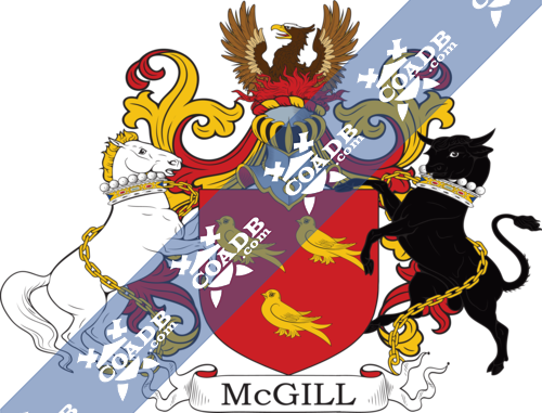mcgill-supporters-4.png