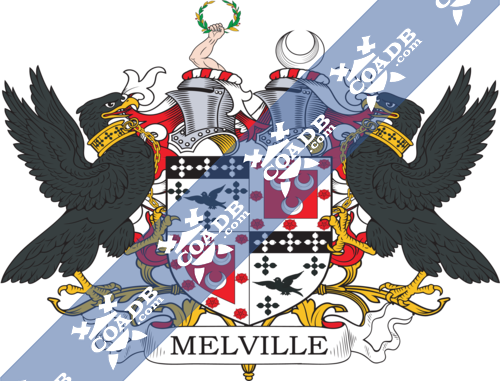 melville-supporters-11.png