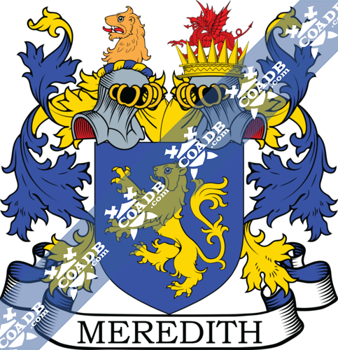 meredith-twocrest-3.png