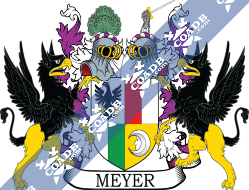 meyer-supporters-58.png