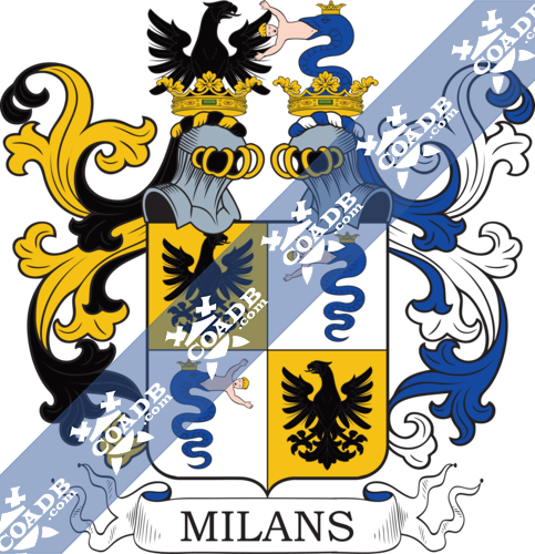 milano-twocrest-15.png