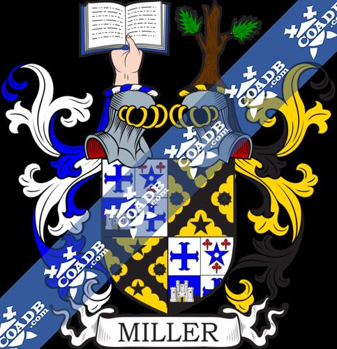 miller-twocrest-27.png