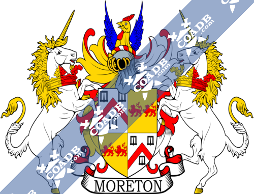 moreton-supporters-5.png
