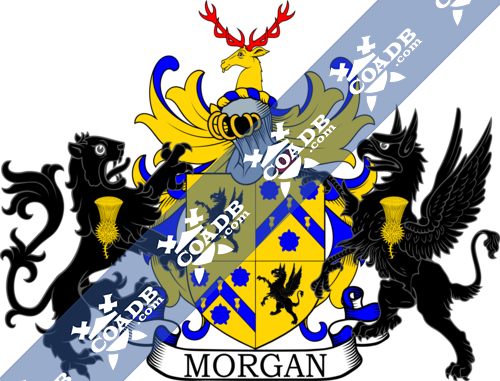 morgan-supporters-2.png