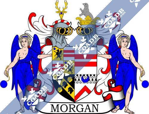 morgan-supporters-47.png