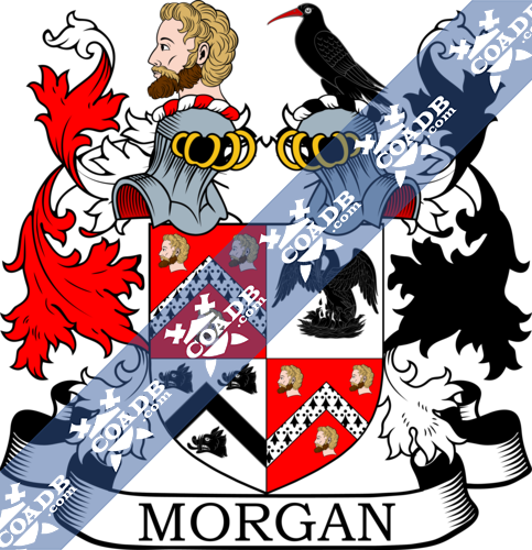 morgan-twocrest-12.png