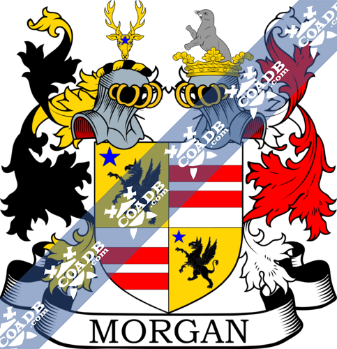 morgan-twocrest-46.png