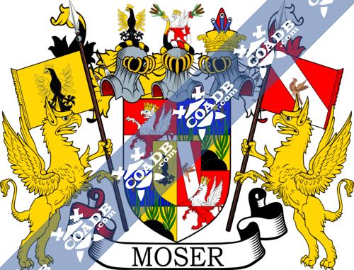 moser-supporters-12.png