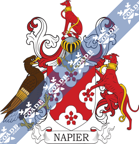 napier-withcrest-17.png