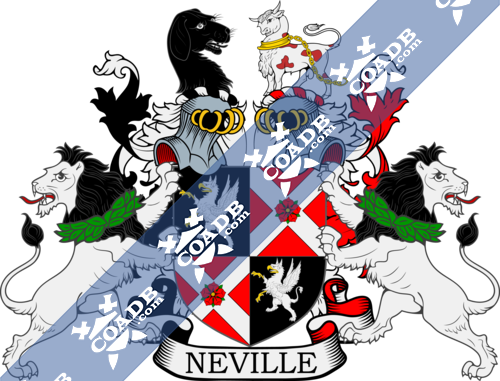 nevill-supporters-52.png