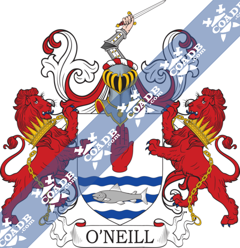 o'neill-twocrest-8.png
