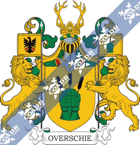 overschie-twocrest-3.png