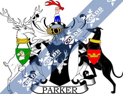 parker-supporters-4.png