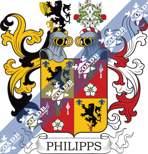 phillips-twocrest-54.png