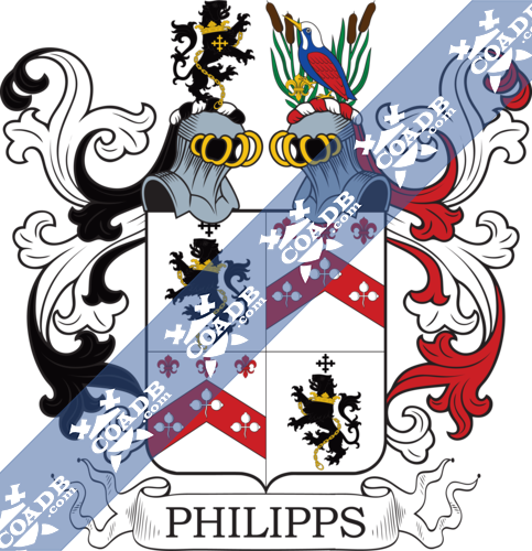 phillips-twocrest-56.png