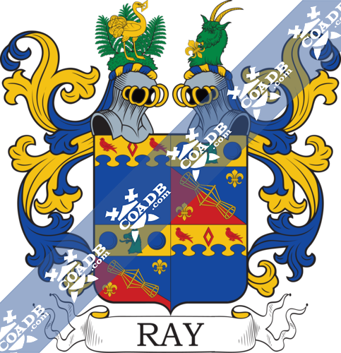 ray-twocrest-8.png
