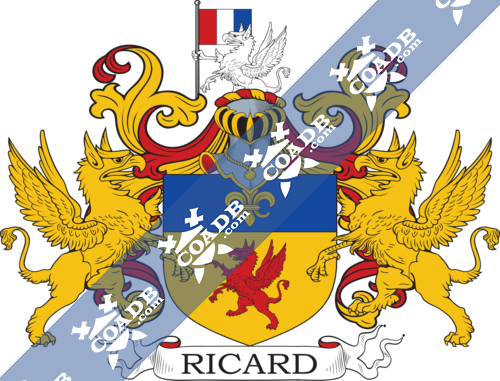 ricard-supporters-7.png