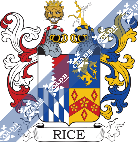 rice-twocrest-12.png