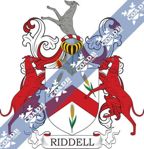 ridell-twocrest-11.png