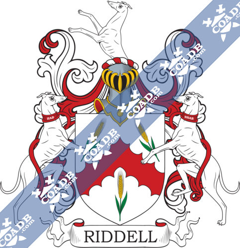 ridell-twocrest-13.png