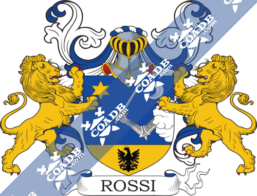 rossi-supporters-20.png