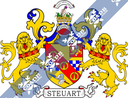 stewart-supporters-118.png