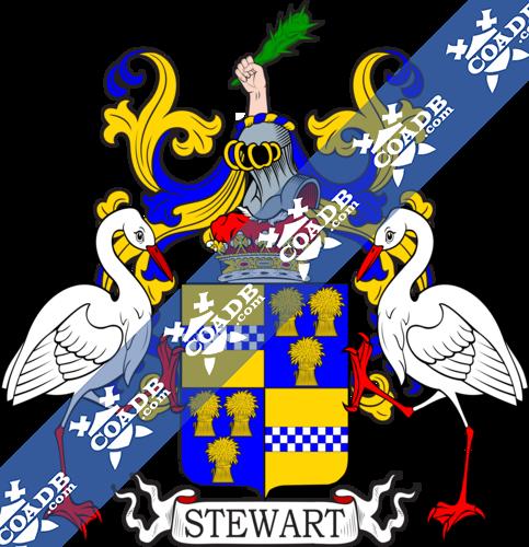 stewart-twocrest-49.png