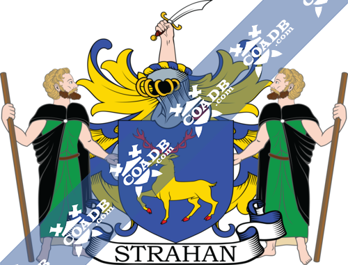 strahan-supporters-4.png