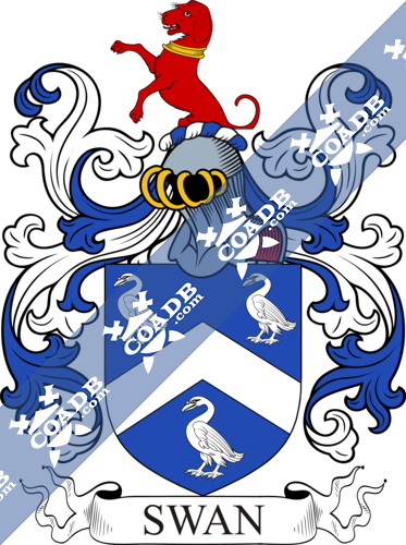 swan-withcrest-4.png