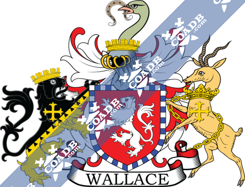 wallace-supporters-1.png