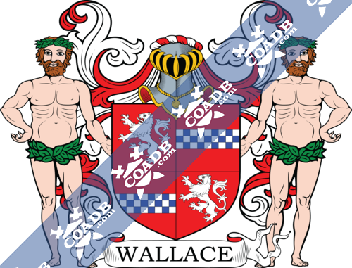 wallace-supporters-2.png