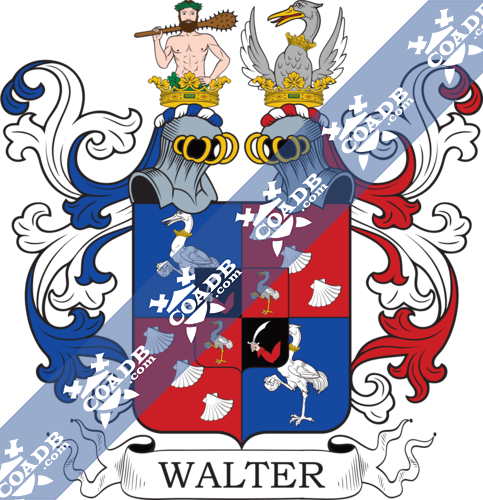 walter-nocrest-30.png