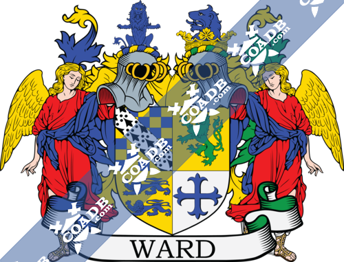 ward-supporters-46.png
