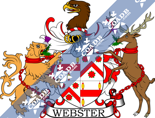 webster-supporters-12.png
