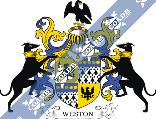 weston-supporters-9.png