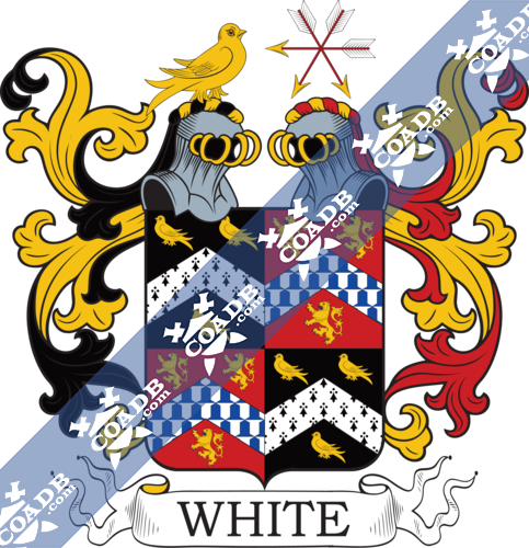 white-twocrest-87.png
