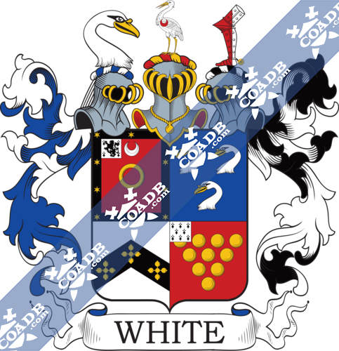 white-twocrest-88.png