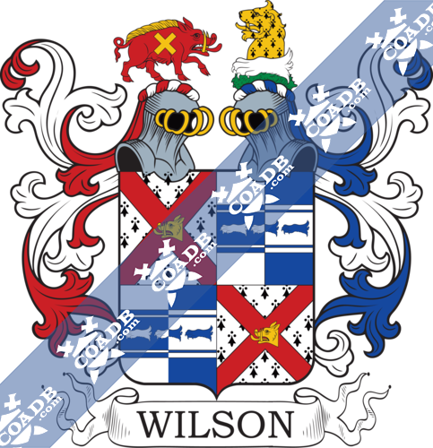 wilson-twocrest-55.png