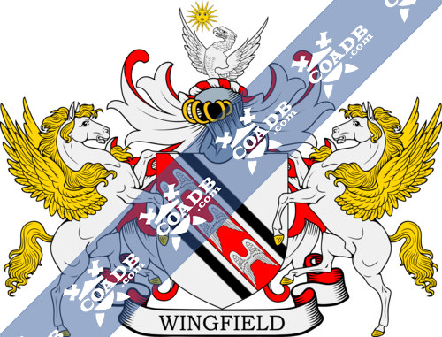 wingfield-supporters-9.png