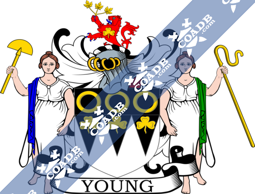 young-supporters-27.png